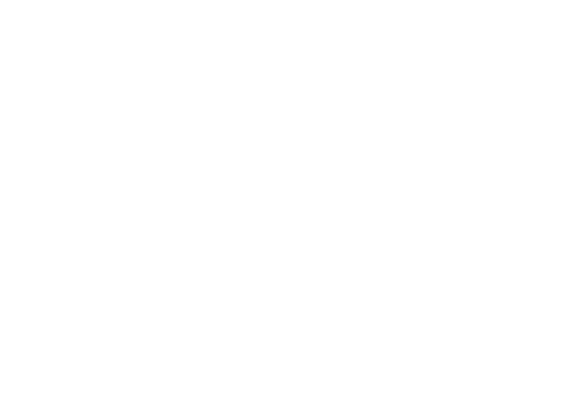 Rudeboy Media Logo Wit